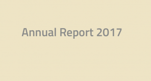 Annual report Softronic 2017